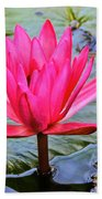 Red Lotus Beach Towel