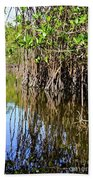 Red Mangrove Roots Reflections In The Gordon River Beach Towel