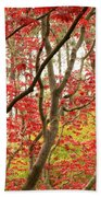 Red Maple Leaves And Branches Beach Towel