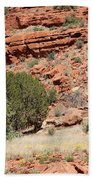 Red Mesa And Yellow Flowers Beach Towel