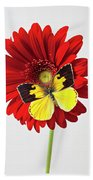 Red Mum With Dogface Butterfly Beach Towel by Garry Gay
