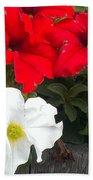 Red N White Beach Towel