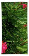 Red Oleander Arbor Beach Towel