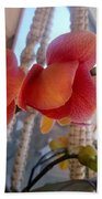 Red Orchid Flowers 01 Beach Towel