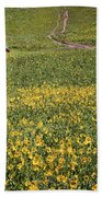 Red Outhouse 6 Beach Towel