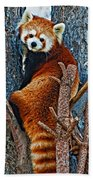Red Panda Beach Towel