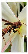 Red Paper Wasp And Spider Lily 001 Beach Sheet
