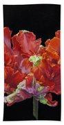 Red Parrot Tulip - Oils Beach Towel