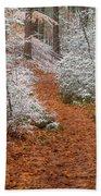 Red Path Beach Towel