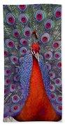 Red Peacock Beach Towel