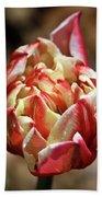 Red Peony Tulip Beach Towel