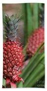 Red Pineapples Beach Towel
