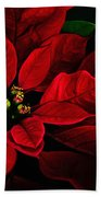 Red Poinsettia Merry Christmas Card Beach Towel