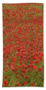 Red Poppies 2 Beach Towel