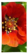 Red Red Bloom Beach Towel