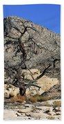 Red Rock Canyon Nv 1 Beach Sheet