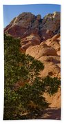 Red Rock Textures Beach Towel