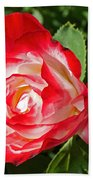Red Rose And A Sidecar At Pilgrim Place In Claremont-california Beach Towel