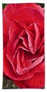 Red Rose F135 Beach Towel