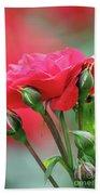 Red Rose Flower Beach Towel