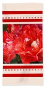 Red Rose With A Whisper Of Yellow And Design Beach Towel