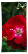 Red Rose With Buds Beach Towel