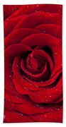 Red Rose With Dew Beach Towel by Garry Gay