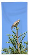 Red-shouldered Perch Beach Towel