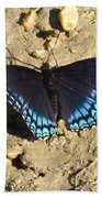 Red Spotted Purple Astyanax Beach Towel
