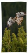 Red-tail Flight At Sunset Beach Towel