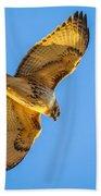 Red Tailed Hawk II Beach Towel