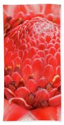 Red Torch Ginger Beach Sheet