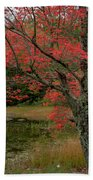 Red Tree II Beach Towel by Gary Lengyel