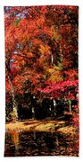 Red Trees By Lake Beach Towel