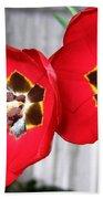 Red Tulip Duo Beach Towel