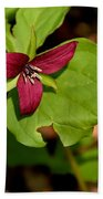 Red Upright Trillium Beach Towel