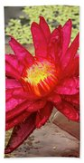 Red Water Lily Beach Towel