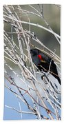 Red Winged Black Bird At Chatfield Beach Towel