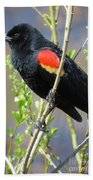 Red-winged Perch Beach Towel
