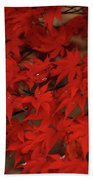 Red With Envy Beach Towel