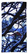 Red Woodshed Beach Towel
