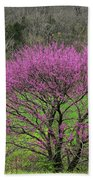 Redbud And Field In Jefferson County Beach Towel