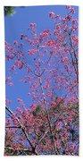 Redbud In Bloom Beach Towel