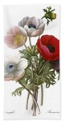 Redoute: Anemone, 1833 Beach Towel