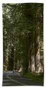 Redwood Highway Beach Towel