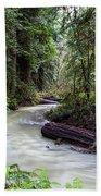 Redwood Stream Beach Towel