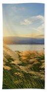 Reeds Beach Towel