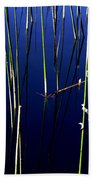 Reeds Of Reflection Beach Towel by Chris Brannen