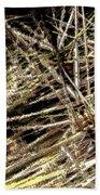 Reeds Reflected Beach Towel