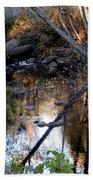 Reflect Upon Autumn Beach Towel
